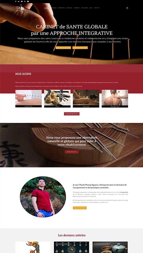 Acupuncture-Nguyen-portfolio-Gini-Concept-Design