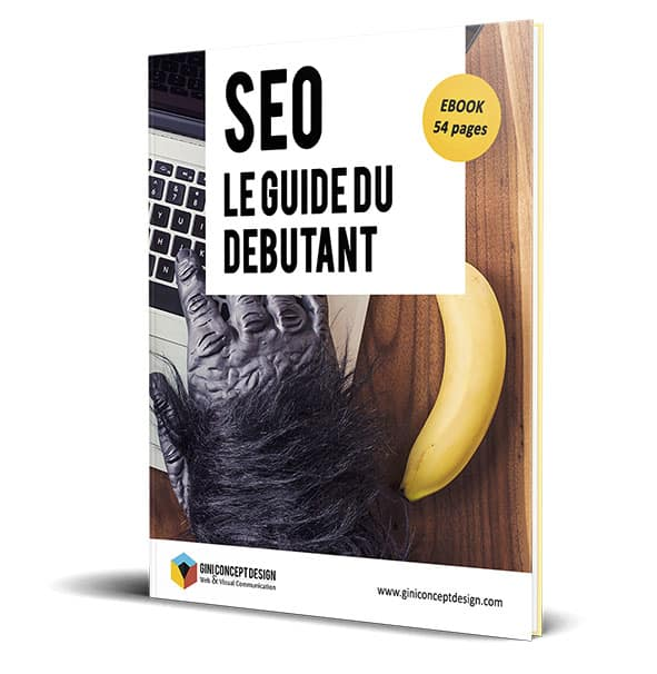 Presentation-Ebook-SEO-fr-GiniConceptDesign