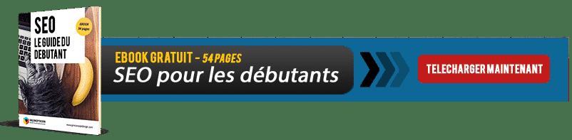 banniere-ebook-seo-debutant
