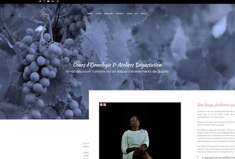 Redesign of the responsive website of Les Nenettes du Vin and local SEO.